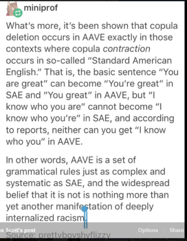 Linguist AAVE discussion3